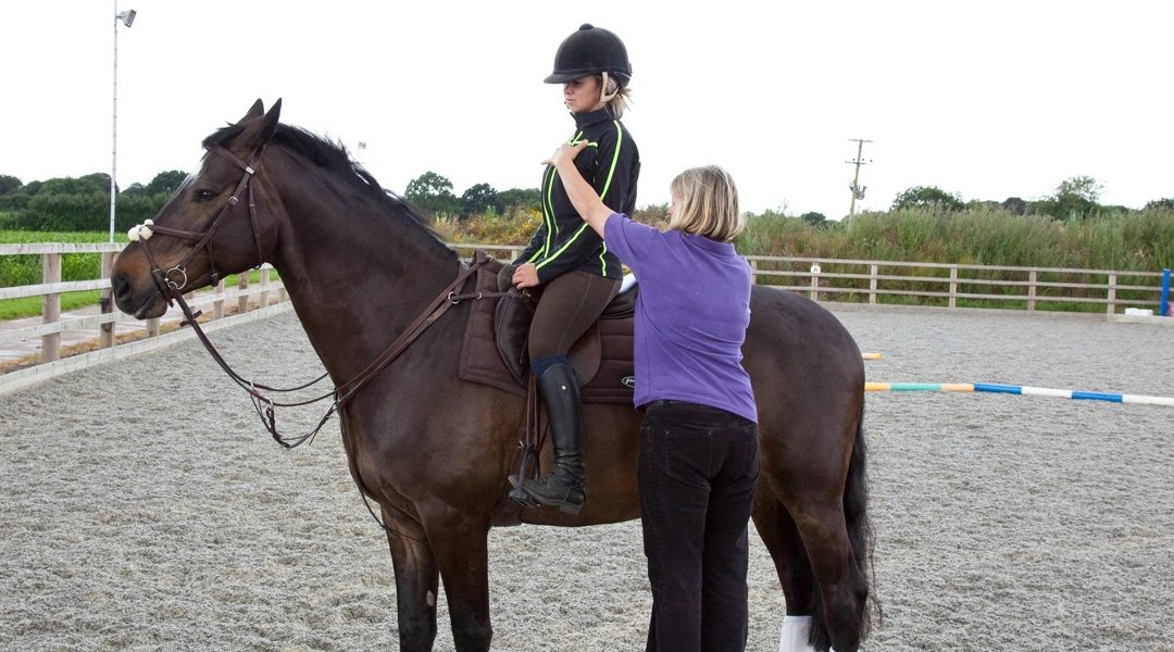 Rider Biomechanics Assessment & Clinics | High Wycombe Amersham Buckinghamshire